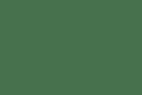 Stewards Trust
